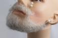 борода средняя белая